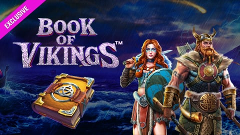 Book of Vikings