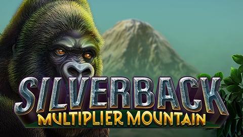 SILVERBACK MULTIPLIER MOUNTAIN